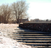 Повод весны Стоковое Изображение RF