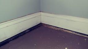 Повреждение воды стены стоковые фотографии rf