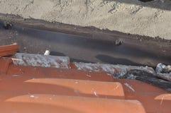Повреждения голубя на крыше Стоковая Фотография RF