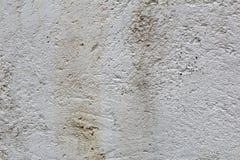 Поврежденная влажная белая текстура гипсолита штукатурки Стоковое Изображение RF