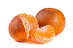 2 поврежденных tangerines изолированного на белой предпосылке Стоковая Фотография RF