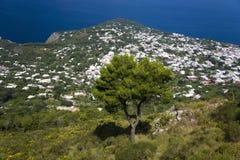 Повышенный взгляд Капри, итальянский остров с полуострова Sorrentine на южной стороне залива Неаполь, в области Campa Стоковое фото RF
