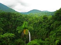 повышенный водопад Стоковые Фото