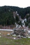 Погань в камнях гор Стоковые Фото