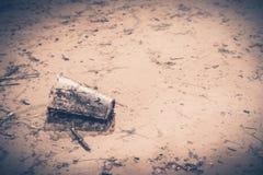 Погань на пляже Стоковая Фотография RF