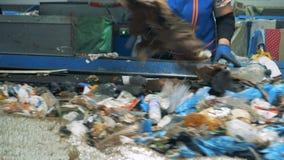 Погань получает отделилась концепцией загрязнения окружающей среды специалисту по завода сток-видео