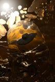 поглощенный янтарь Стоковое фото RF
