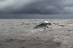 погода шторма океана стоковое фото