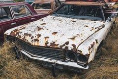 Погост автомобилей Стоковое Изображение RF