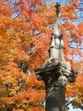 погост листва 3 Стоковые Изображения