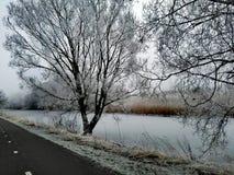 Погода зимы стоковое фото