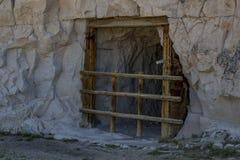 Погреб корня на скале регистра Стоковое Фото