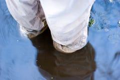 погруженные в воду ноги Стоковые Фотографии RF