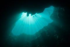 Погруженные в воду выгребная яма и свет Стоковые Изображения
