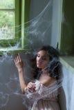 Поглощенный в spiderwebs Стоковая Фотография