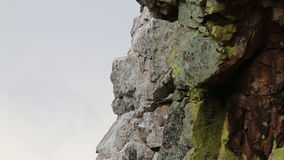 Подавая хищник Griffon на Salto del Gitano, Испании сток-видео