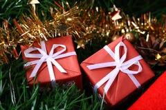 подарка ели коробок красный цвет 2 цепного золотистый Стоковое Фото