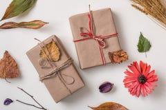2 подарка с осенью сушат заводы Стоковое Изображение RF