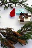Подарки и тетрадь рождества лежа около зеленого цвета украшают ветвь на черном взгляд сверху предпосылки Космос для текста стоковые фотографии rf