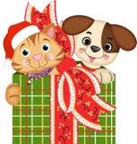 Подарки рождества собаки и кота Стоковое Изображение