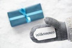 Подарок бирюзы, перчатка, гостеприимсво середин Willkommen, снег стоковое фото