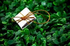 подарок коробки предпосылки травянистый Стоковое Изображение RF