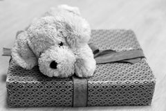 Подарок младенца Стоковое Фото