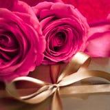 Подарок надежды стоковые изображения