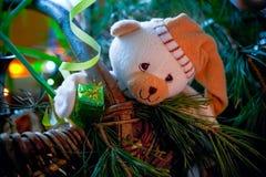 подарок новичка медведя Стоковая Фотография