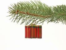 подарок рождества Стоковая Фотография