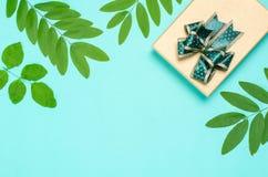 Подарочная коробка и зеленые лист на предпосылке Стоковые Фотографии RF