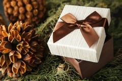 Подарочная коробка с коричневым смычком на ветвях ели Стоковые Фотографии RF