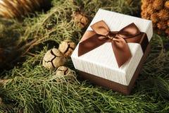 Подарочная коробка с коричневым смычком на ветвях ели Стоковая Фотография