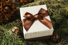 Подарочная коробка с коричневым смычком на ветвях ели Стоковая Фотография RF