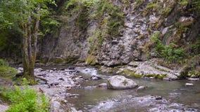 Подачи быстро 4k реки горы акции видеоматериалы
