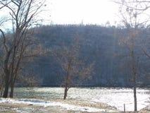 Подачи зимы стоковое изображение rf