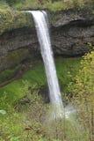 Подачи падений изображения 3 южные с скалы лавы, серебра понижаются парк штата, Орегон Стоковые Изображения RF