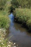 Подачи The Creek стоковое изображение