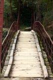 подвес моста деревянный Стоковые Фотографии RF