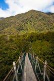 подвес zealand моста новый Стоковые Изображения