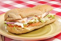 подводная лодка сандвича плиты Стоковая Фотография RF