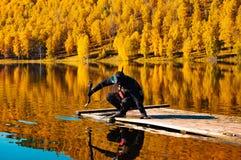Подводное звероловство в сибирском taiga стоковые фото