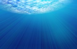 подводно Стоковые Фотографии RF