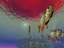 подводно Стоковое фото RF
