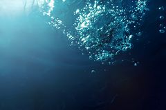Подводные пузыри с солнечным светом Подводные пузыри предпосылки стоковые изображения rf