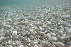 Подводный взгляд стоковое изображение