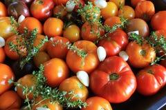 Подготавливайте для томатов жаркого с травами, чесноком и бальзамическим уксусом, селективным фокусом стоковая фотография rf