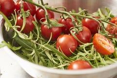 Подготавливать ингридиенты для варить, томаты вишни в a Стоковые Изображения