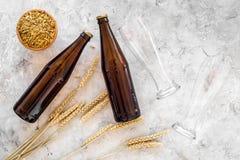 Подготавливать пиво Ячмень около пивной бутылки и стекла на сером взгляд сверху предпосылки Стоковые Фото