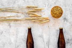 Подготавливать пиво Ячмень около пивной бутылки и стекла на сером взгляд сверху предпосылки Стоковое Изображение